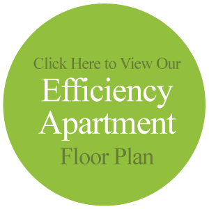 Efficiency Floor Plan